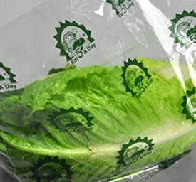 lettuce bags